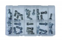 ASSORTMENT BANJO BOLTS 40-PIECE (1PC)